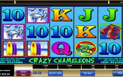 Crazy Chameleons Slot Providing Best Medium To Have Fun