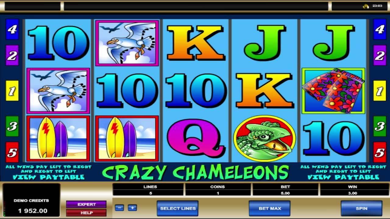 Crazy Chameleons Slot Providing Best Medium To Have Fun